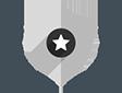 silver badge